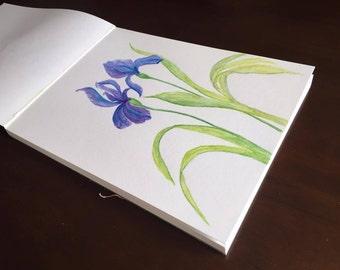 Purple Iris Watercolor Painting