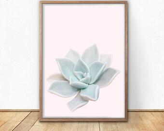 Succulent Art Print - Mint and Pink Wall Art, Print Download, Botanical Art, Cactus Poster, Blush Pink Art, Succulent Printable, Chic Decor