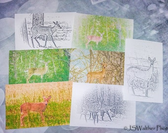 7 Greeting Cards.. Deer sketches