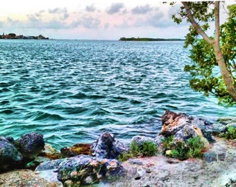 Marathon Key Atlantic View photo 5