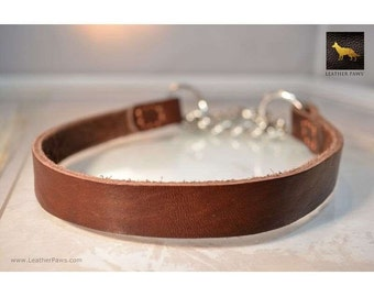 Leather Paws Halter Martingale Leather Collar