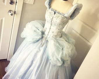 Custom Princess Dress adult and kid sizes