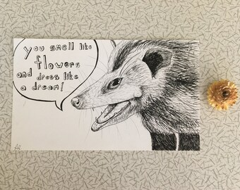 Positive Possum