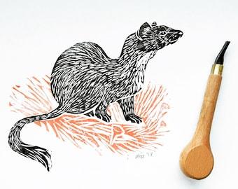Original illustration ermine - handmade stamp