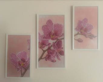 Pink Orchids Romance