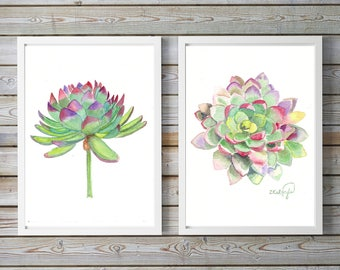 watercolor painting succulents