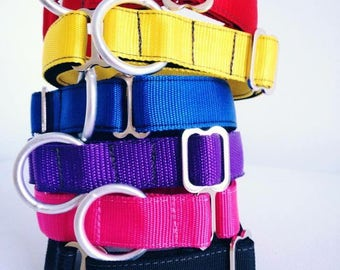 Heavy duty dog collar / unattached