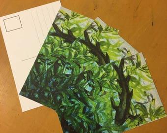 Kelp Forest Postcards-Set of 4