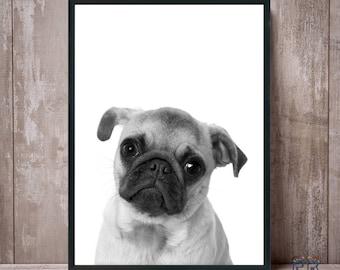 Pug Print, Dog Print, Black and White, Animal Print, Animal Decor, Nursery Decor, Dog Poster, Dog Photo, Kids room decor