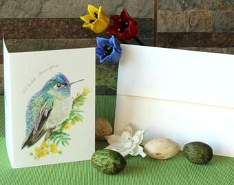 Violet- Headed Hummingbird