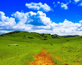 Landscape Photography,  Scenic Photos, Walking Trail Photos, Nature Photography