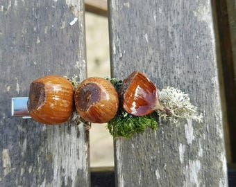 Handmade nuts and lichen hair clip