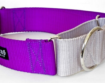 "Martingale Nylon 2 Color Dog Collars - Grey - Purple, Pink, Blue, Red, Black -- 1"" - 2"" widths"