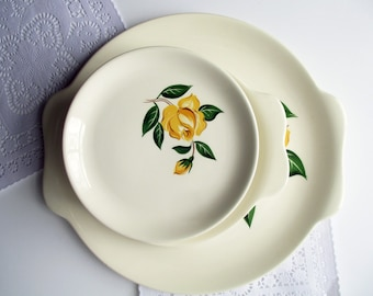 Vintage Salem Yellow Rose Plate and Platter Set of Ten - Retro Party Set