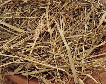 Pioneer Prairie Grass Bowl Basket Filler Tuck ET