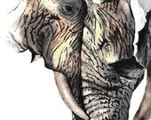 Elephants Art Print Water...