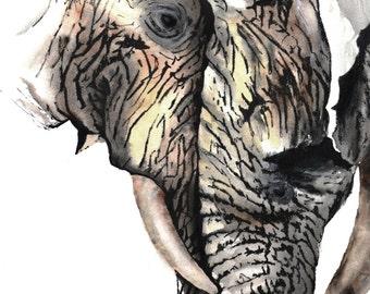 Elephants Art Print Watercolor 8x10
