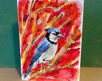 Blue Jay on a Branch, Hand Painted Cards, Original Watercolor, Oregon Art, Bird Card, Northwest Bird, Bird Watching, 5 X 7, Bird Lover Gift