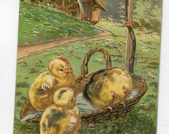 Easter Greetings, Chicks Vintage Postcard  Chicks playing in basket