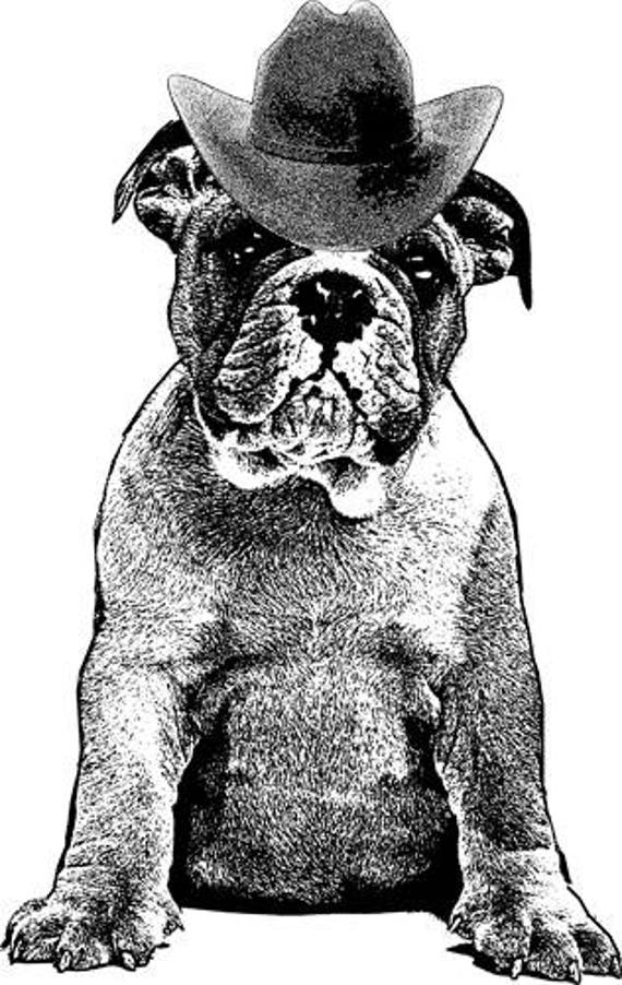 english bull dog cowboy hat Digital Image Download clip art png clip art jpg digital stamp animal pets digi stamp printable graphics