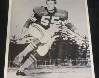 John Campbell 8x10 Press Photo Vintage 1960's  Minnesota Vikings Line Backer