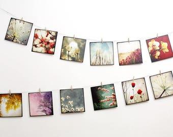 "Nature Postcards SET 02 - TWELVE 5,5""x5,5"" Fine Art Postcards"
