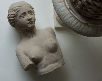 cement greco roman bust