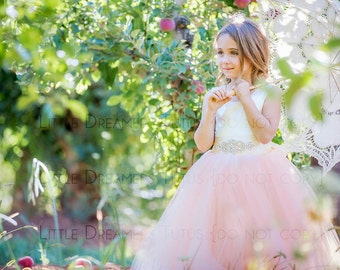 The Juliet Dress in Ivory Satin and Blush Tulle with Rhinestone Sash - Flower Girl Tutu Dress