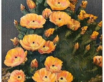 Vintage Southwest Postcard - Yellow Prickly Pear Cactus in Bloom (Unused)
