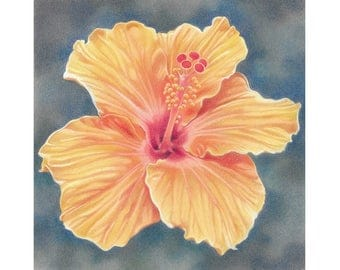 "Flower Art Print, limited edition - ""Orange Hibiscus"""