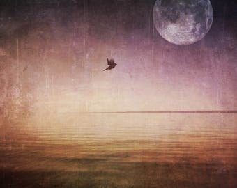 full moon fine art photo, bird ocean lake landscape photography, purple gold home decor bedroom wall, large canvas, spring march surreal sky