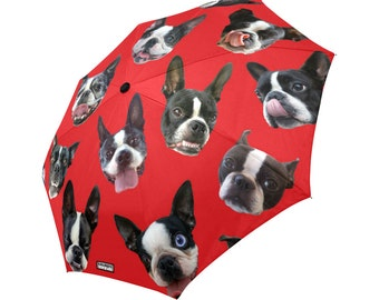 Boston Terrier Umbrella - dog umbrella - funny photos of boston terriers - custom background color
