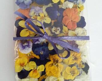 25 Dried Violas, Dry Flowers, Craft Supplies, Wedding Decorations, Table Decor, Floral, Fairy, Confetti, Embelishments, Pansy, Wedding Decor