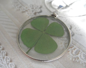 4 Leaf Clover Looking Glass Style Pendant-Symbolizes Luck, Love, Hope and Faith-A Rare Find-Gifts Under 30-Nature's Wearable Art