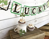 LUCKY St. Patrick's Day Banner Decoration - Glittered Shamrock and Kraft Striped banner - St Paddy's Day Party Decor