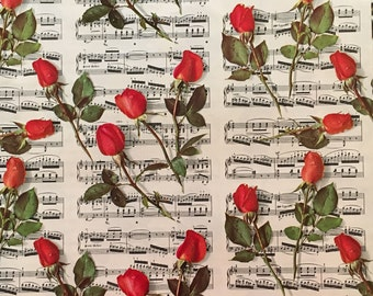 Vtg Gift Wrap - Sheet Music and Red Roses - All Occasion - Marcel Schurman Switzerland - One Full Sheet