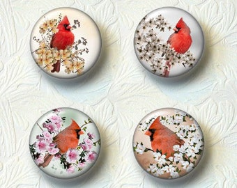 "Cardinals Magnet Sets, 1.5"" in Size, Choose your favorite from the 4 Different Sets   538"