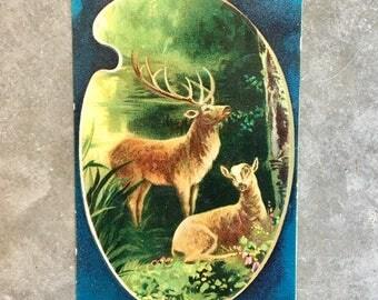 Vintage 1912 Deer Post Card - Used