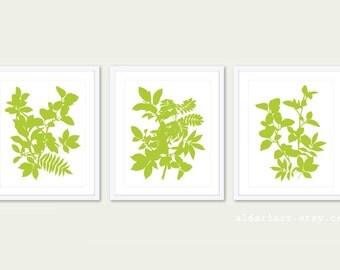 Leaves Art Print -  Set of 3 Prints - 5x7 or 8x10 - Botanical Wall Art - Tropical Leaves Wall Art - Green Leaf Art - Modern Prints