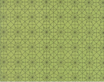 Olive's Flower Market - Cathedral Lace in Green by Lella Boutique for Moda Fabrics