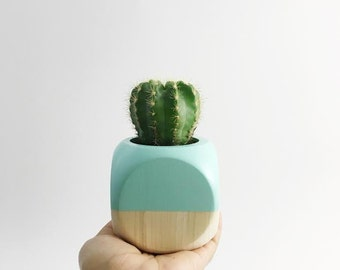 New Size - Geometric Planter // Seafoam + Wood
