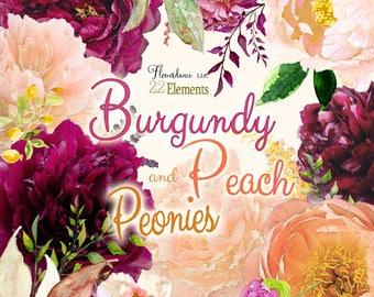 Burgundy and Peach Peony Clipart, peach clipart, burgundy peony flower clipart, png clipart wedding, peony clipart, peach flower clipart