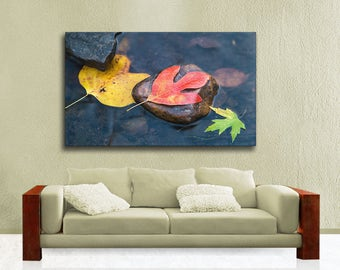 Autumn Leaves Limited Edition Photography on Extra Large Canvas Gallery Wrap, Fall Colors, Ready to Hang Over the Couch Wall Art, Sassafras