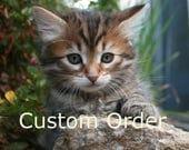 Custom Order for Cheryl