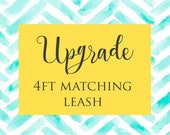 4ft Matching Dog Leash - Silver
