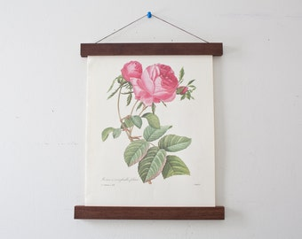 Vintage Flower Illustration and Magnetic Poster Holder - Walnut Print Hanger Wooden Poster Hanging Wood Photo Frame Floral Artwork Rose