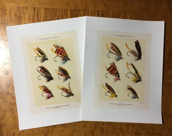 SALMON FISHING PRINTS -  fly tying - 2 glorious fly fishing bait - set of two prints of fishing tackle - orvis flies