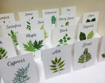 Botanical Wedding Cards, Woodland Table Tents, Wedding Tree Cards, Wedding Leaf Cards, Green Leaf Escort Cards, Woodland Name Cards, W109
