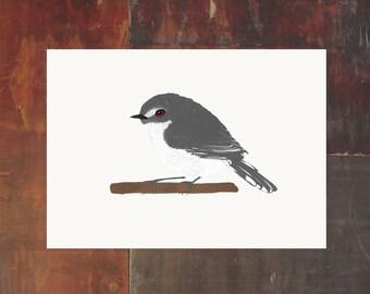 New Zealand Bird Archival Art Print - Grey Warbler