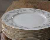 Set of 8 Duchess 'Tranquility' vintage china 25cm dinner plates